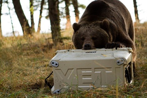Yeti Coolers, Superior Product, superior customer, cash flow, strategic planning, Greg Herring